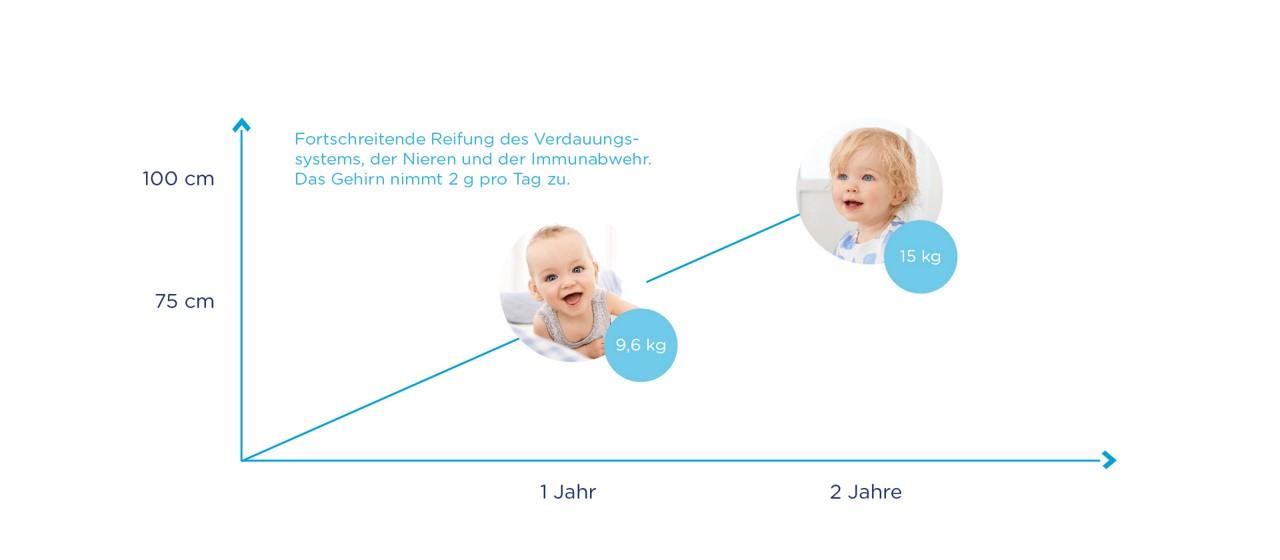 Entwicklung Kleinkind Diagramm