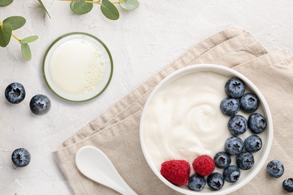 Article benefits probiotics food
