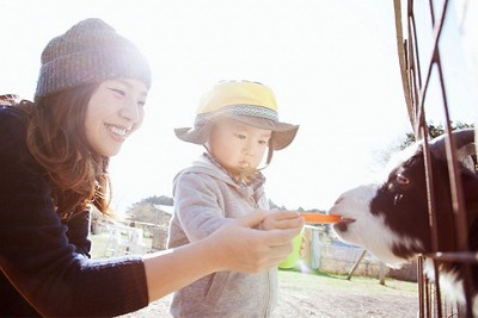 article-dirt-immunity-outdoor-activities