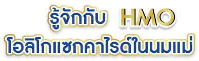 hiq-hmo02
