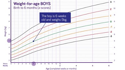Nutricia pediatric DRM growth graph weight for age boys birth to 6 months