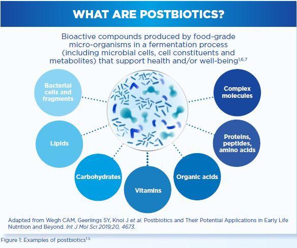 What are postbiotics
