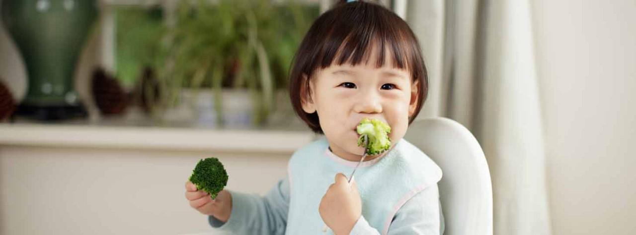 toddler-main.jpg