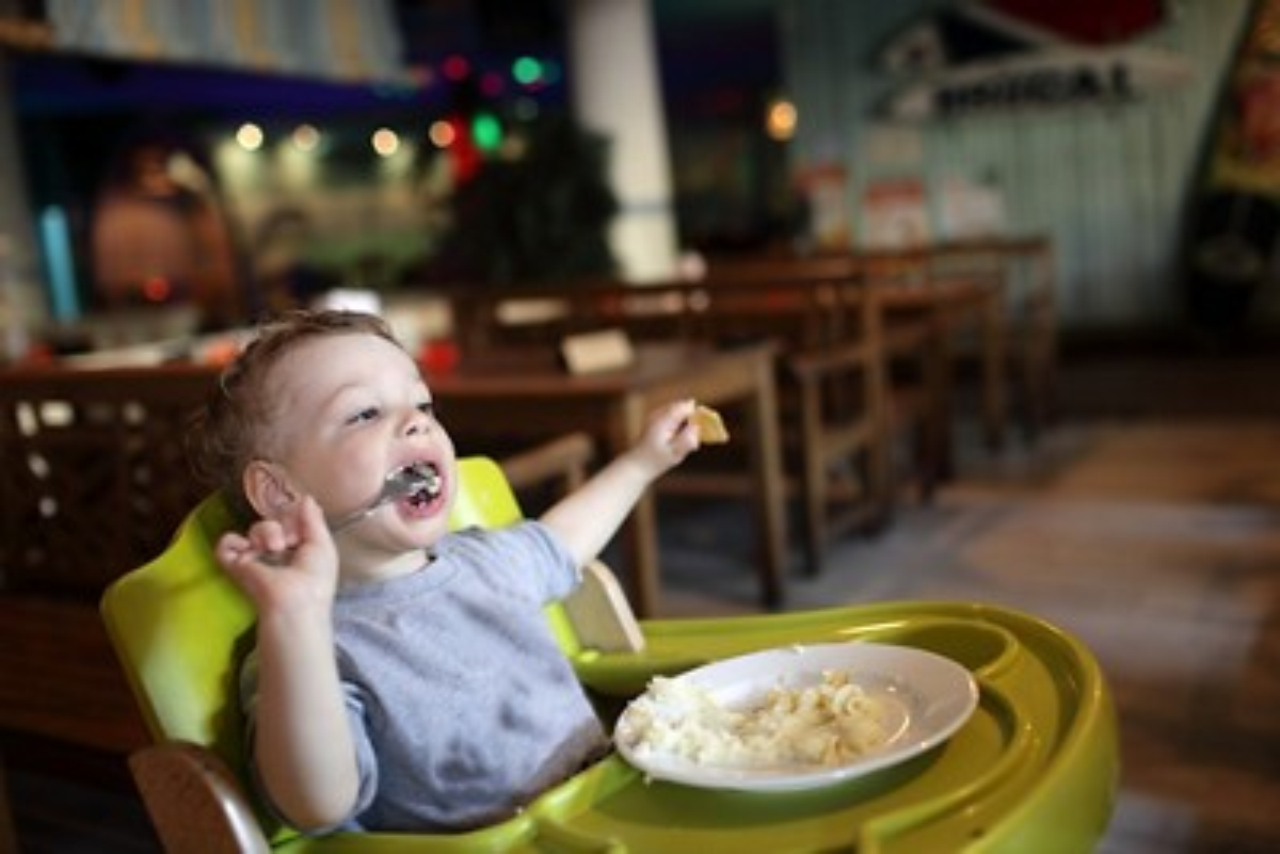 Baby lunch highchair restaurant