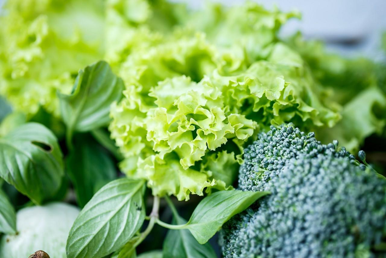 Lettuce broccoli greens