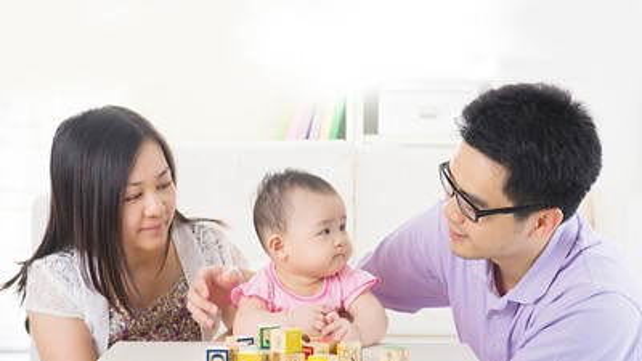 Tips family fare masthead